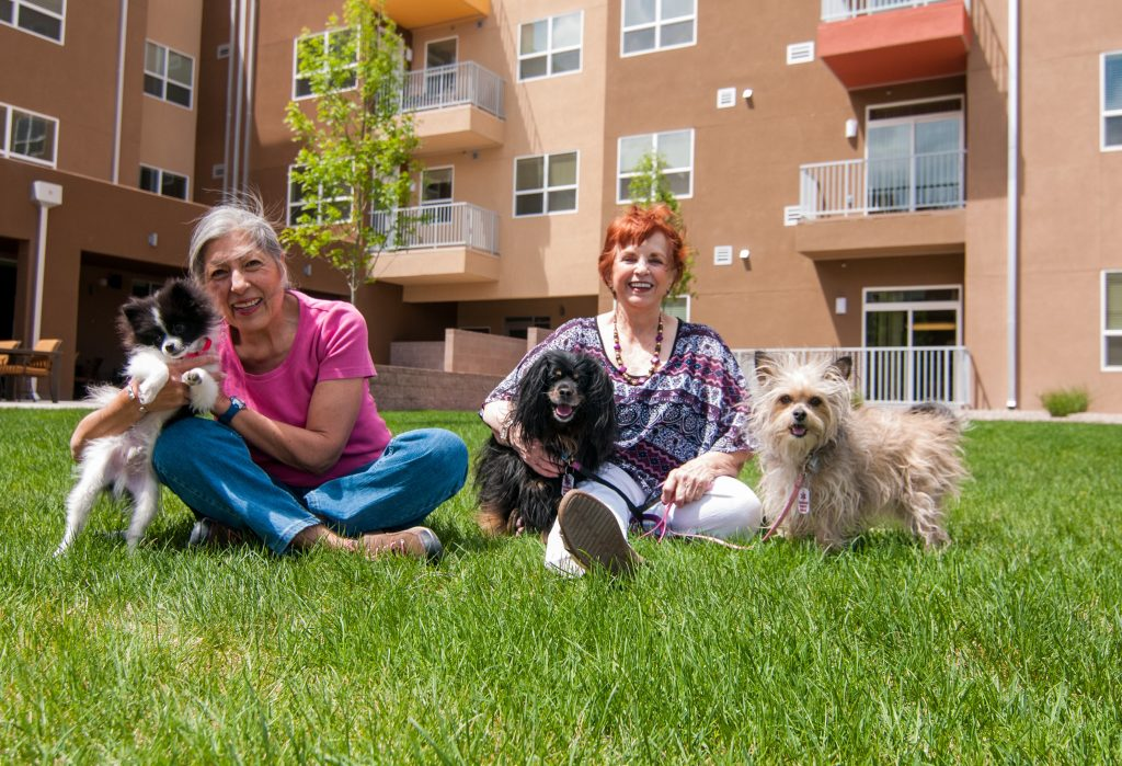 Residents on Grass with their Dogs